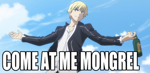 come at me mongrels