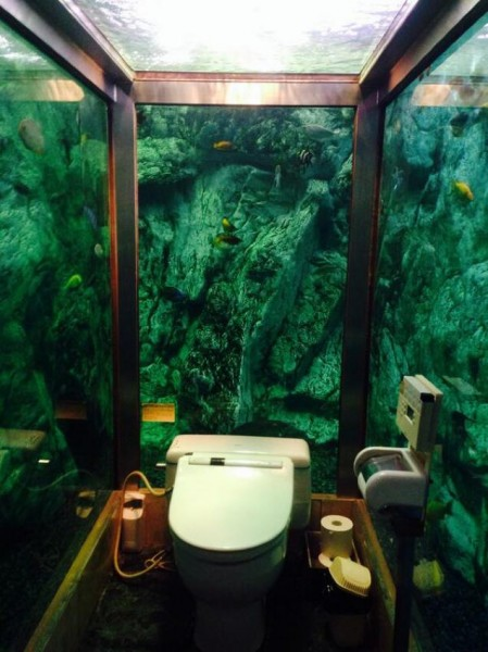 fabulous toilets (10)