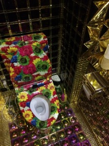 fabulous toilets (13)