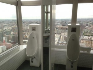 fabulous toilets (14)