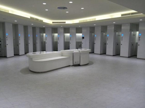 fabulous toilets (9)