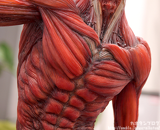 colossal titan gsc takeya (2)